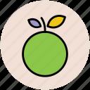 citrus, food, fruit, healthy food, orange, organic icon