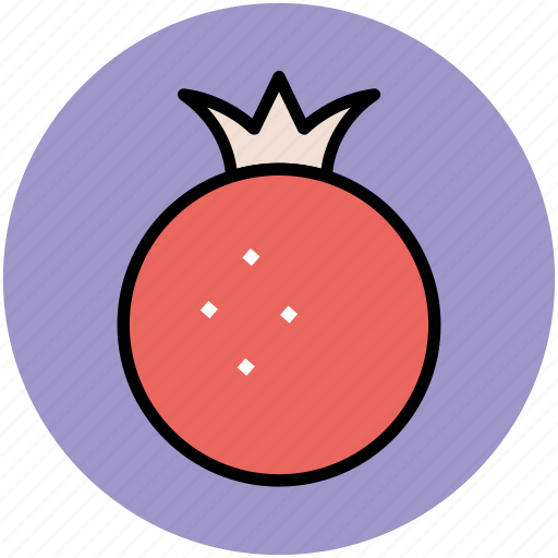 food, fruit, healthy food, nutrition, organic, pomegranate icon