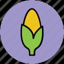 cob, corn, corncob, food, grain, maize, vegetable icon