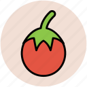diet, food, nutrition, organic, tomato, vegetable icon