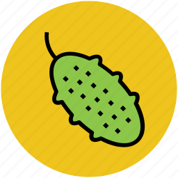 balsam-pea, bitter gourd, bitter melon, bitter squash, food, momordica charantia, vegetable icon