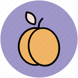 apricot, diet, fruit, healthy food, nutrition, peach icon