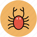 crab, food, healthy food, lobster, seafood icon