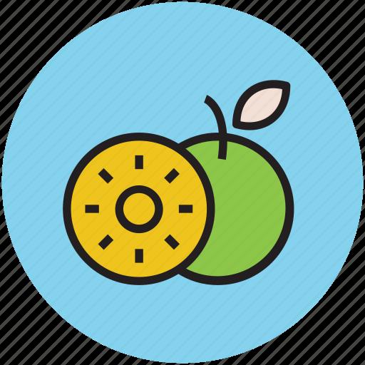 citrus, food, fruit, healthy food, nutrition, orange icon