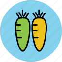 carrots, diet, food, healthy food, root vegetable, vegetables icon