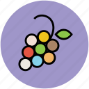 bunch of grapes, diet, food, fruit, grapes, nutrition icon