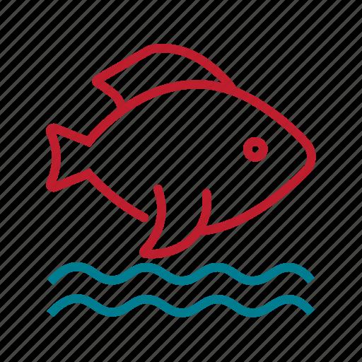 fish, fishing, health, non veg, nutritious food, sea food icon