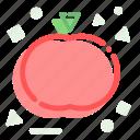 food, garden, nature, tomato icon