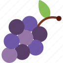 food, fruit, grapes, wine icon