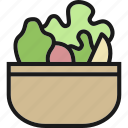 diet, dinner, fresh, healthy, salad, vegetable, vegetarian icon