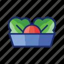 salad, vege, vegetables icon