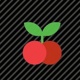 cherry, food, fruit icon