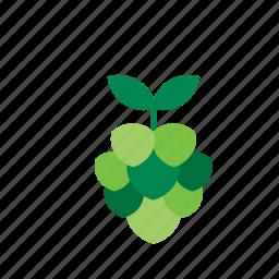 food, fruit, grape icon