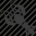crawdads, crawfish, crayfish, freshwater lobster, mudbugs