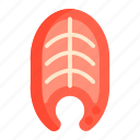 fish, meat, salmon icon