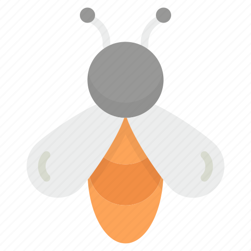 apis mellifera, bee, bee hive, honey bee, insect icon