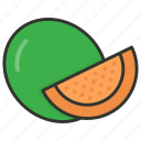 cantaloupe, food, fruit, honeydew, melon icon