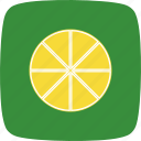 drink, fruit, lemon, lime, orange icon