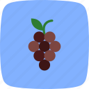 fresh, fruit, grapes, healthy, juicy icon