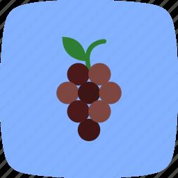 fresh, fruit, grapes, healthy, juicy icon