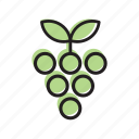 food, fruit, grape, grapes, vegetable icon