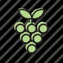 food, fruit, grape, grapes, vegetable