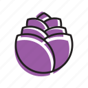 cabbage, food, fruit, purple, vegetable icon