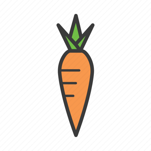 carrot, food icon