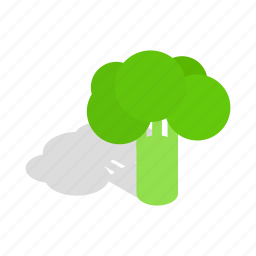 broccoli, food, fresh, green, isometric, vegetable, vegetarian icon