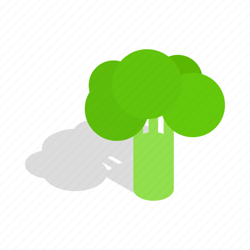 Broccoli, food, fresh, green, isometric, vegetable, vegetarian icon - Download on Iconfinder