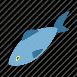 animal, fin, fish, fishing, isometric, sea, water icon