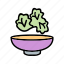 lettuce, salad, vegetables icon