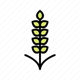 agriculture, crop, food, grain, plant, seed, wheat icon