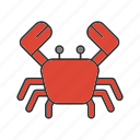 animal, cooking, crab, food, marine, sea, seafood icon
