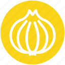 allium, clove, cook, cooking, garlic, ingredient, vegetables icon