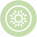 exotic fruit, food, fruits, healthy diet, kiwi, kiwifruit icon
