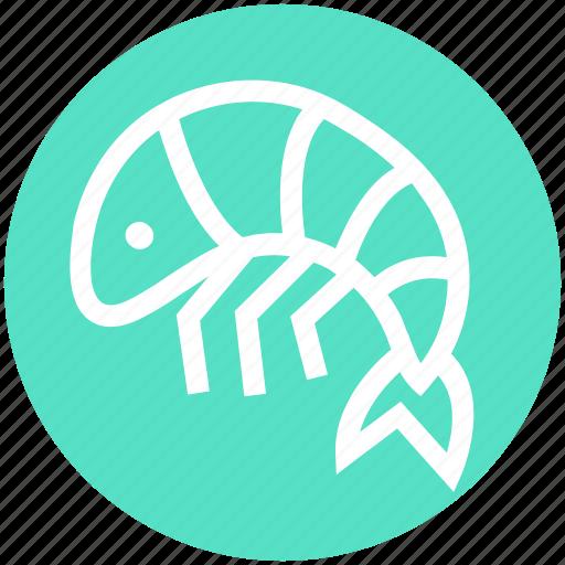 Crustacean, food, foodix, prawn, seafood, shrimp icon - Download on Iconfinder