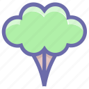 broccoli, cooking, eating, food, green flower, nature, salad, vegetable icon