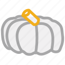 food, pumpkin, pumpkin vegetable, vegetable icon