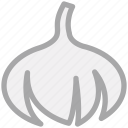 cooking ingredient, food, onion, vegetable icon