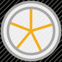 citrus, citrus half, citrus slice, fruit icon
