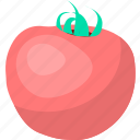 food, fruit, organic, tomato, vegetable, vegetables icon