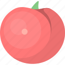 food, fresh, fruit, tomato, vegetables, vegetarian icon
