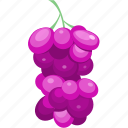 diet, fruit, grape, juice, vegetable icon