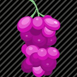 diet, fruit, grape, juice, vegetable icon
