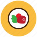 food, meals, plate, sides, steak, vegetables icon