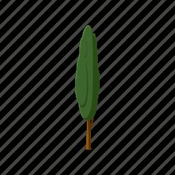 blog, cartoon, forest, plant, poplar, tree, trunk icon