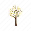 autumn, blog, cartoon, fall, nature, season, tree icon