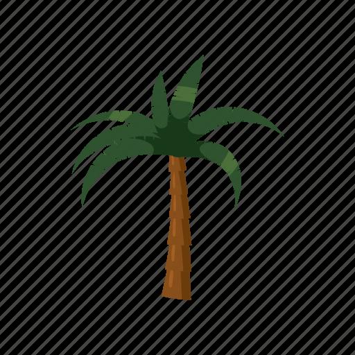 blog, cartoon, nature, palma icon, plant, tree, tropical icon