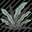 plant, grass, leaf, tropical, snake, garden, tongue